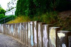 _DSC0727 (Tomas B / LT) Tags: paint art children grass house home choack painting bushes kids child wall