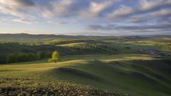 Южный Урал. Раннее утро. #своифото, #пейзаж, #природа, #утро, #рассвет, #дерево, #натура, #восход, #sunrise, #nature, #tree, #Landscape, #sun, #туман, #лучи, #foggy, (ЛеонидМаксименко) Tags: пейзаж восход утро лучи foggy tree nature landscape природа натура дерево sun рассвет своифото туман sunrise