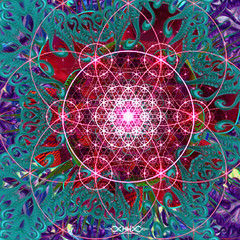 "psionic bloom web 5 • <a style=""font-size:0.8em;"" href=""http://www.flickr.com/photos/132222880@N03/40820280480/"" target=""_blank"">View on Flickr</a>"