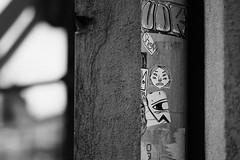 Nancy, France (jaminjan96) Tags: travel adventure explore forest woods nature outdoors creative reflection portrait girl mirror art blackandwhite contrast gain dark green leaves trees urban city france nancy street people architecture animals peacock duck bird dog vsco film photographer photography wander wanderlust