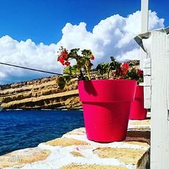 Γλάστρες στα Ματαλα - - #allincrete #crete2018 #cretelandscape #ilovecrete #matala #instacrete #matalasbeach #cretegreece #photografer #creteislandgreece #visitcrete #creteisland #photo_travelers #matalanfamily #photomania #cretephotoshoot #photografia #c (IaTriDis) Tags: iatridis photographer pictures photos photo