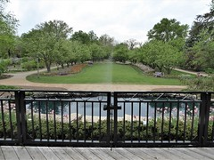 Lombard, IL, Lilacia Park, View from Deck Overlooking the Pond (Mary Warren 11.2+ Million Views) Tags: lombardil lilaciapark nature flora plants landscape view water pool fountain deck fence metal park garden