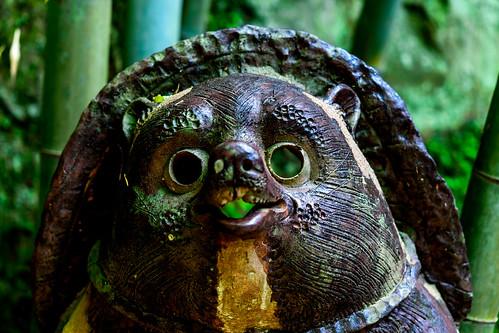 Raccoon dog of Shigaraki of Jochi-ji Temple, Kamakura : 北鎌倉・浄智寺 信楽焼のたぬき