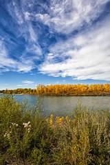 Memories, Bow River (Hank888) Tags: bowriver calgary canada hank888