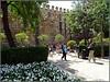 Seville (Spain) (sky_hlv) Tags: plazadeltriunfo sevilla seville andalucía andalusia españa spain europe europa plaza square