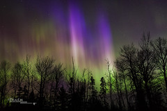 Ionized Gas (Images by Beaulin) Tags: grandportageindianreservation nightsky starscape auroraborealis starrysky grandportage stars astrophotography starphotography northernlights cookcounty nightscape starrynight minnesota