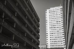 Conflicting contrasts.. ——————————————————————— Join me on my other profiles.. www.antsg.uk Instagram / antsguk Facebook /antsguk Twitter /antsguk Flickr / antsguk 500px / antsguk ——————————————————————— #streetphotography #streetlife #streetphoto_bw #str (antsguk) Tags: ifttt instagram conflicting contrasts ——————————————————————— join me other profiles wwwantsguk antsguk facebook twitter flickr 500px streetphotography streetlife streetphotobw streetphotographybw streetphotographer urbanphotography buildings building buildingshotz tower towerblocks towerblock towerstagram architecture architecturephotography architectures architectureporn architectureview blackandwhite blacknwhite bnw bnwstreetphotography bnwcaptures noiretblanc brighton instalike instabnw instastreet