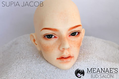 IMG_3364 (Meanae) Tags: bjd abjd balljointeddoll measbjdsalon commission faceup normal redhead freckles supiadoll jacob