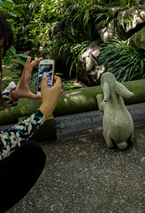 Rabbit in the smartphone (sapphire_rouge) Tags: 紫陽花 kimono hydrangea yukata 着物 鎌倉 浴衣 lady kitakamakura kamakura 寺院 temple 北鎌倉 rabbit statue