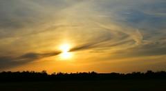 Das Gold des Himmels //// Gold of sky (Pixelchen1) Tags: nikon5500 nikonafs35mm114g sunset sonnenuntergang landscapes landschaft lookinthesky blickindenhimmel eveningsun abendsonne abendhimmel eveningsky