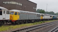 Class 56 line up.  Leicester.  30th May 2018 (Ajax46.) Tags: leicester 30thmay2018 56038 56104 56018