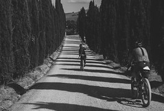 Tuscany Trail 2018 (Hagbard_) Tags: tuscanytrail trail gravelbike bikepacking biketouring italy italia tuscany 2018 tour travel velove outside outdoor cross allroad ride portrait