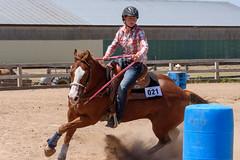 JBC_6353.jpg (Jim Babbage) Tags: krahc bethany appaloosa horses horseshow 2018