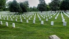 Arlington (Raúl Alejandro Rodríguez) Tags: cementerio cemetery nacional national graves tumbas graveyard árboles trees santuario shrine paz peace arlington virginia usa