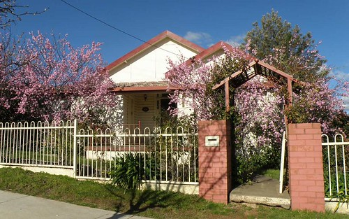 20 Elizabeth Street, Young NSW 2594