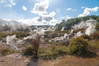 Emanation de souffre à Wai o Tapu / Suffer emanating at Wai o Tapu (Matthieu Lumen) Tags: fumée geothemrmal geothermie naturagency nature nouvellezélande paysage rotorua roturoa thermalwonderland vapeur waiotapu
