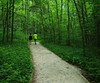 On the Lost Valley Trail, Northwest Arkansas (danjdavis) Tags: lostvalley lostvalleytrail couple tres forest trail arkansas