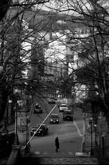 (Davide Zappettini) Tags: ciry urban people alone elegant street filmphotography filmbw bw blackandwhite bianconero davidezappettiniphotography salsomaggiore