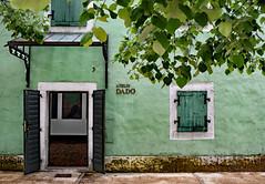 Shades of Green (Jocelyn777) Tags: doorsandwindows facade building architecture green colour foliage mintgreen villages cetinje montenegro balkans travel