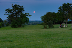 Fullmoon (bakosgabor57) Tags: moon blue bluehour love nature nightshot moonrise fullmoon landscape