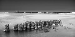 Norderney seascape (MAICN) Tags: sand wasser mono norderney sw nordsee sea lowtide himmel bw beach blackwhite monochrome strand urlaub schwarzweis einfarbig sky seascape northsea ocean water ebbe