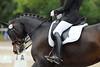 _MG_7870 (dreiwn) Tags: dressage dressur dressuur pferd reitturnier turnierreiten pferdesport horse horseback horseriding equestrian reitverein dressurprüfung kandare doublebridle reiten pferde reitplatz ridingarena