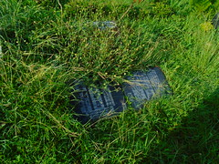 DSC00523 (joeymasong@yahoo.com) Tags: jaypee cemetery 墓地 公墓 陵園 memorialpark 紀念墓園 puntod grave graveyard 墳墓 掃墓 pandayan meycauayan 梅卡瓦延 meycauayancity 梅卡瓦延市 梅卡瓦延城市 bulacan 布拉幹省 philippines 菲律賓