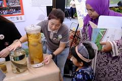 218festival-of-biodiversity-2018-02jun2018[adrianelee] (Habitatnews) Tags: nustoddycats festivalofbiodiversity fob2018 tampines lkcnhm