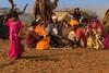 Kalbelya music camp Pushkar Mela. Rajasthan (Tito Dalmau) Tags: kalbelia music camp camels fair mela pushkar rajasthan india