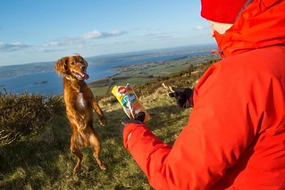 Our favourite way of spending time with Watson is to be outside. We love to walk, hike, surf, canoe... We spend our days actively and we need nutritious food to keep our energy levels up! For Watson, Pedigree treats are a must to bring on our adventures.