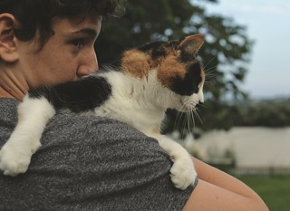 159. One boy and his cat