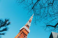 _MG_6672 (waychen_c) Tags: japan tokyo minatoku tokyotower tower architecture building cityscape sky blue red 日本 東京 港区 芝公園 東京タワー 東京鐵塔 2017東京旅行