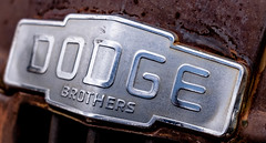 DSCF8214-2 (Alistair-harris) Tags: desert badge truck old rust dodge car