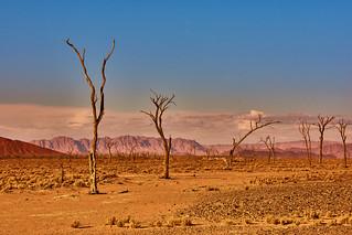 Tsauchab valley, Namibia