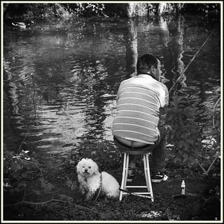 Le Pêcheur du Dimanche #19