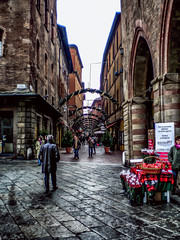 Back to Bologna - 2 (AaronP65 - Thnx for over 14 million views) Tags: bologna italy emiliaromagna it italia