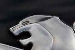 Lion (lespittets1) Tags: macromondays 100mm canonef100mmf28macro 100d canon transportation peugeot 2008