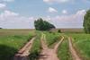 *** (PavelChistyakov) Tags: russia tula oblast region field road trip sony alpha dslr digital raw lightroom rpp nature landscape village countryside