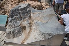FMG_3022 (Marco Gualtieri) Tags: israele palestina galilea giudea terrasanta pellegrinaggio marcone1960 nikond850 d850