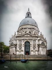 Venice PRJ11