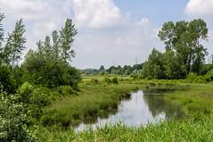 The plains (Marco van Beek) Tags: plains landscape tree view sky clouds holland europe beautiful world nikon d5000 afs dx nikkor 18200mm f3556g ed vr ii