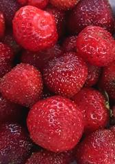 delicious (Terraria) Tags: strawberry strawberries red closeup freshfruit fruit fromthegarden garden homestead