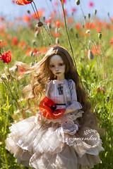 poppies field (cyranka) Tags: dim gayane bjd doll dimdoll dressbycyranka