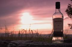 Nikon D1x (LEGADEMA pictures) Tags: nikon d1x vollformat natur wiese himmel sonne wolken 1855mm berlin germany deutschland steine glas flasche gegenlicht blätter blüten muster
