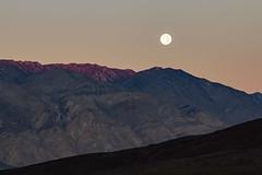 Desert Morning Moon (matthewkaz) Tags: salinevalley moon moonset sunrise mountains mountain sky deathvalley desert inyomountains california 2014