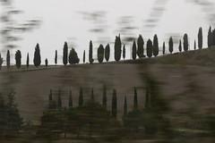 Fantasy (raffaele pagani) Tags: provinciadisiena toscana tuscany centroitalia centeritaly italia italy canon valdorcia unesco unescoworldheritagesite patrimoniodellunesco patrimoniomondialedellumanità