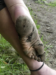 Tough! (Barefoot Adventurer) Tags: barefoot barefooting barefoothiking barefooter barefeet barefooted baresoles barfuss blacksoles earthsoles earthing earth earthstainedsoles energy texture healthyfeet leathersoles happyfeet hardsoles heelcracks hiking wrinkledsoles woodlandsoles dryearth callousedsoles connected callouses toes toughsoles anklet arches