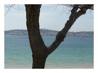mirando el mar.