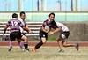 20180602249 (pingsen) Tags: 台中 橄欖球 rugby 逢甲大學 橄欖球隊 ob ob賽 逢甲大學橄欖球隊