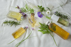 essence (Wendy:) Tags: bottles herbs stilllife perfume essence parfum tiltshift chives geraniumblue nigella lavender sage purple leaves